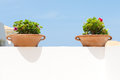 Two clay pots with flowers Royalty Free Stock Photo
