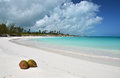 Two coconuts on a desert beach of exuma bahamas Stock Image