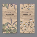Two color vintage labels for peppermint and chamomile herbal tea.