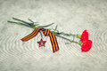 Two colors cloves george ribbon and the order of the red star victory day in great patriotic war Royalty Free Stock Photos