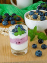 Two-coloured yogurt with blueberries Royalty Free Stock Photo