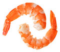 Two cooked unshelled tiger shrimps Royalty Free Stock Photography