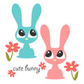 Two cute bunnies illustration of Royalty Free Stock Image