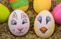 Two cute eggs with painted Easter bunny and chicken Royalty Free Stock Photos