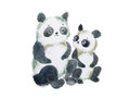 Two cute furry panda bears hand painted with watercolors
