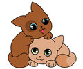 Two cute kittens Royalty Free Stock Photo