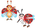 Two cute ladybugs Royalty Free Stock Image