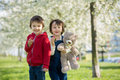 Two cute little children, boy brothers, eating strawberry in the Royalty Free Stock Photo