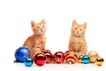 Two cute little red kittens sitting near colorful and sparkly Christmas toys and looking straight at camera Royalty Free Stock Photo
