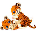 Two cute playful tiger cub Stock Images