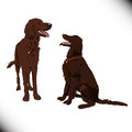 Two cute vector dogs you could use it as an elenebt for your design Royalty Free Stock Images