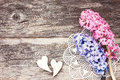 Two decorative hearts and fresh hyacinth on aged wooden background. Valentine Day concept.