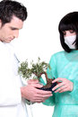 Two doctor with banzai tree Royalty Free Stock Image