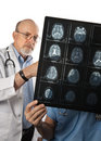 Two Doctors Viewing MRI Brain Scans Stock Photography