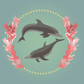 Two dolphins with the seaweeds