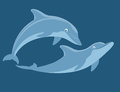 Two dolphins swimming cartoon illustration Stock Images