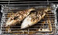 Two dorade fishes on the barbecue almost ready to eat Stock Photos