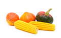 Two ears of corn and three pumpkins on a white background isolated close up horizontal photo Stock Photos