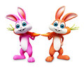 Two Easter bunny with carrot on blank background Stock Image