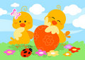 Two easter chicks Royalty Free Stock Image