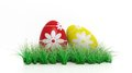 Two easter eggs painted with flowers and green grass Royalty Free Stock Image