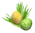 Two eggs in grass (yellow-green) Stock Photography