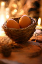 Two eggs in nest Royalty Free Stock Photo