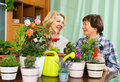 Two elderly women with flowerpots aged sitting near table many and gossiping Stock Images