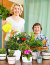 Two elderly women with flowerpots near table many Royalty Free Stock Photo