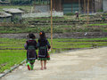 Two ethnic chidrens walking on rural road in Sapa Royalty Free Stock Photo