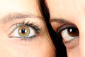 Two eye a close up Royalty Free Stock Image