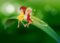 Two fairies sitting on an elongated leaf illustration of the Stock Images