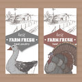 Two farm shop labels with farmhouse, barn, color goose and turkey on white.