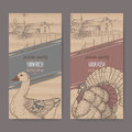 Two farm shop labels with farmhouse, barn, goose and turkey on cardboard.