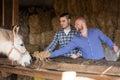 Two farm workers feeding horses Royalty Free Stock Photo