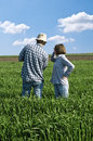 Two farmers in a wheat field talking against blue sky Stock Photos