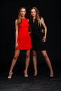 Two fashion models posing in studio Royalty Free Stock Photo