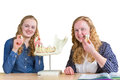 Two female students exploring jaw model with teeth in biology Royalty Free Stock Photo