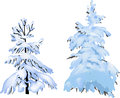 Two firs in snow isolated on white illustration with background Royalty Free Stock Photo