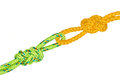 Two Flemish knots Royalty Free Stock Photo
