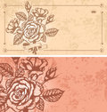 Two floral backgrounds Royalty Free Stock Photos