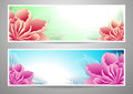 Two flowers banners red magenta peony green marine background advertising something Stock Image