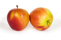 Two fresh apples isolated on white Royalty Free Stock Photo