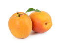 Two fresh apricots  on white background Royalty Free Stock Photo