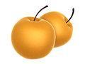 Two Fresh Beige color Asian Pear. Foods and Dishes Series. Royalty Free Stock Photo