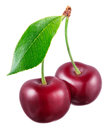 Two fresh cherries with leaf isolated on white background Royalty Free Stock Photo