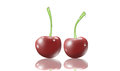 Two fresh cherries white background water drops Royalty Free Stock Photo