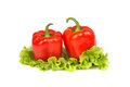 Two fresh paprika on a salad leaf red white background Stock Image