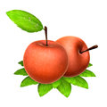 Two fresh red apples foods and dishes series Royalty Free Stock Photo