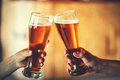 Two friends toasting with glasses of light beer at the pub Royalty Free Stock Photo